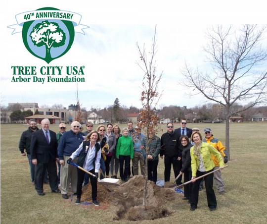 City of Sheboygan was named Tree City USA for the 40th year